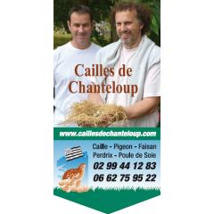 Les Cailles de Chanteloup Terrine de caille, œuf de caille