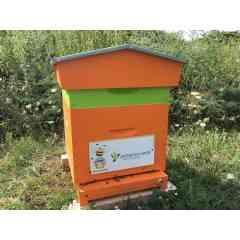 Adopter une Ruche - Entreprise - <p><em><strong>Transmettez vos valeurs grâce aux abeilles</strong></em> </p> <p>Solidarité, esprit d'équipe, sens de l'intérêt commun. De nombreuses valeurs sont présentes dans la nature. <strong>Encouragez-les !</strong>   <em><strong>        </strong></em></p> <p>Développez votre <strong>image d'entreprise citoyenne</strong> et associez vos valeurs à l'avenir de la Biodiversité.</p> <p><strong>Recevez du miel à partager</strong> avec vos équipes et vos clients...</p>
