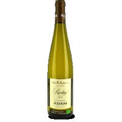 """Riesling """"Les Natures"""" 2017 - Quel beau Riesling de gastronomie ! En effet, le nez légèrement minéral laisse apparaître en bouche des notes d'agrumes fraîches qui lui confèrent une belle vivacité. Voilà un vin fait pour régaler tout amateur de Riesling sec."""