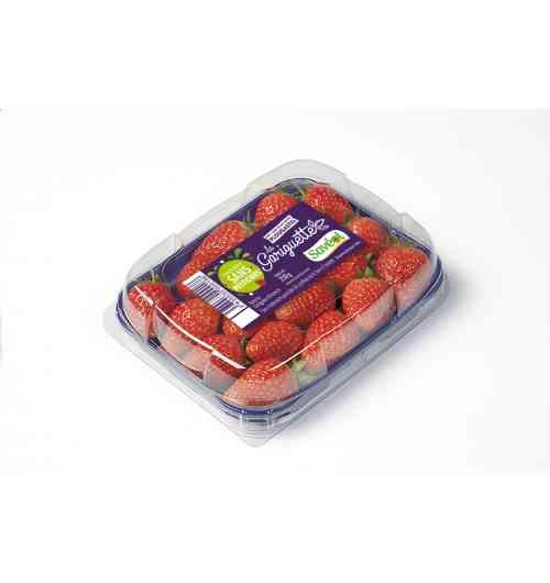 Fraise Gariguette 250g Extra Sans pesticides - La fraise Gariguette est réputée pour sa chair particulièrement parfumée, juteuse et acidulée. Ce produit est garanti sans traitements pesticides de synthèse de la fleur à l'assiette