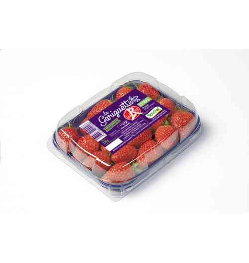 Fraise Gariguette - L'inimitable fraise Savéol est la meilleure ambassadrice du raffinement gourmand à la française. Cueillies à maturité, les fraises Savéol bénéficient de toutes les attentions.