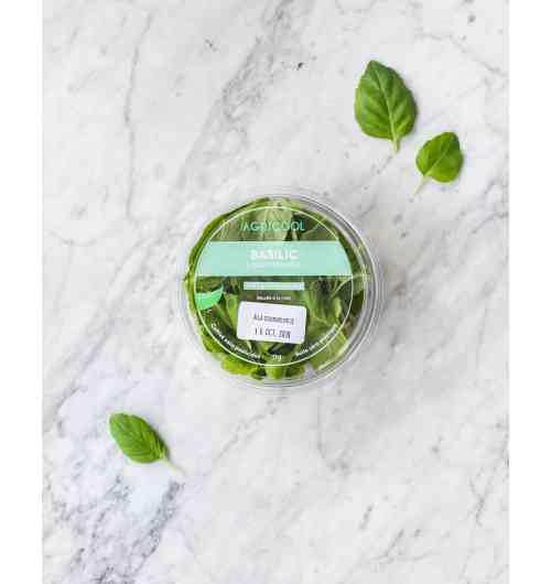 Basilic - Il est cultivé sans pesticides, frais, local, et 100% plaisir.