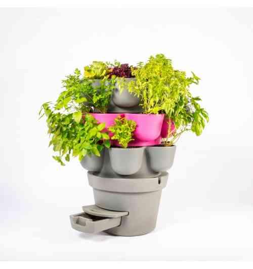 Le Jardicomposteur - Le Jardicomposteur : Jardinez et transformez vos déchets de cuisine en aromates et légumes bio sur votre balcon.