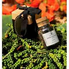 Poivre Patience de Tipadipa - Le poivre patience est cultivé à Tipadipa, un village situé au Centre- Ouest de la Côte d'Ivoire dans la région de Gagnoa.   Les feuilles de Neem et de Moringa utilisées comme engrais pour la culture de ce poivre d'exception; protègent naturellement les plants des insectes nuisibles et favorisent leur croissance.  Cette méthode de culture du poivre patience de Lady Melzah est l'ultime secret de son arôme frais et délicat; ainsi que de ses vertus médicinales.