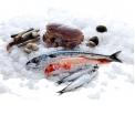 les produits de la mer