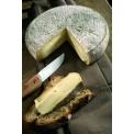 Saint-Nectaire AOP : Fermier et Laitier - <p>L'AOP Saint-Nectaire, 4ième AOP française et 1ère AOP fermière d'Europe, est <br />heureuse de vous faire découvrir son appellation. Avec 13500 tonnes de <br />fromages vendues, le Saint-Nectaire fermier, au lait cru, ou laitier, au lait <br />pasteurisé, offre une grande variété de saveurs. C'est le lait, produit à partir de <br />l'herbe des prairies naturelles, le savoir-faire, l'affinage et les caves qui <br />apportent les spécificités aromatiques du Saint-Nectaire. Située entre 800 et <br />1500 m d'altitude, l'aire d'appellation est la plus petite zone AOP d'Europe. Sur <br />cette terre volcanique, pousse une flore d'une incroyable richesse (thym <br />serpolet, gentiane jaune…) rendant le lait plus riche et les fromages meilleurs. <br /><br />Forte de ses 350 producteurs de lait, 200 producteurs fermiers, 4 entreprises <br />laitières et 23 affineurs, l'AOP Saint-Nectaire veille à vous faire découvrir les <br />multiples facettes de son fromage. <br /><br />Rejoignez-nous sur notre stand Hall 3, allée M</p>